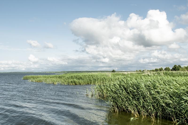 Morze Bałtyckie - okolice